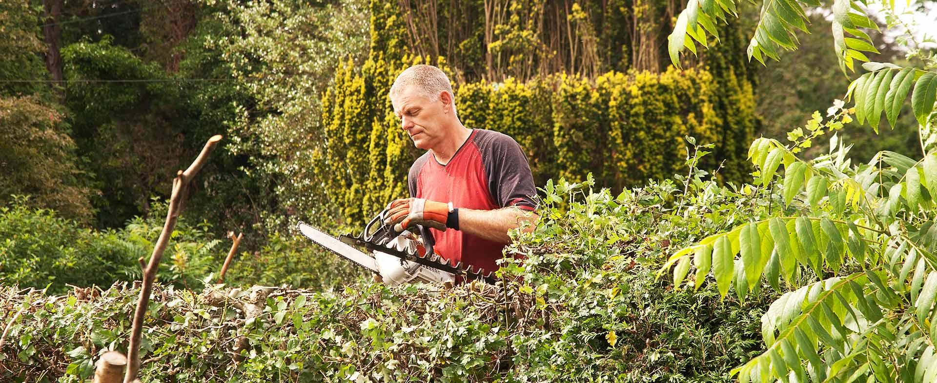 Gardeners Hainault